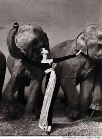 Le fotografie di Richard Avedon all'asta da Christie's