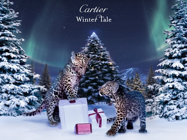 Cartier Winter Tale Movie, un viaggio tra i gioielli di Natale della maison [VIDEO]