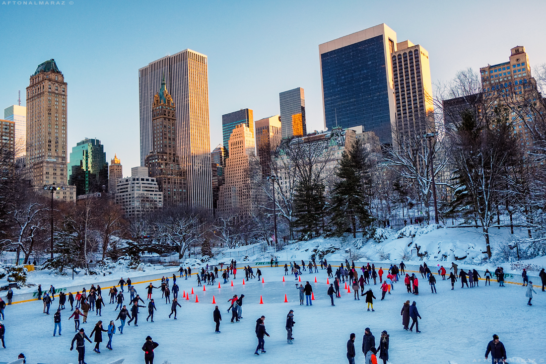 6 Wollman Rink a Central Park