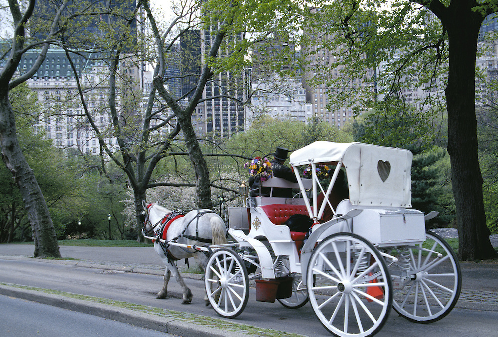 Carriage ride in Central Park, New York City, NY