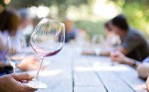 I migliori vini italiani per ogni regione