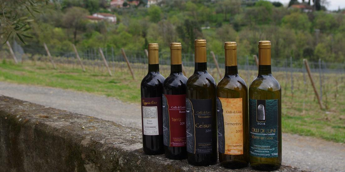 riconoscere un buon vino dalla bottiglia