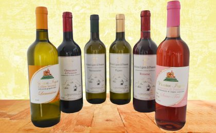 Vini della Liguria: i più pregiati