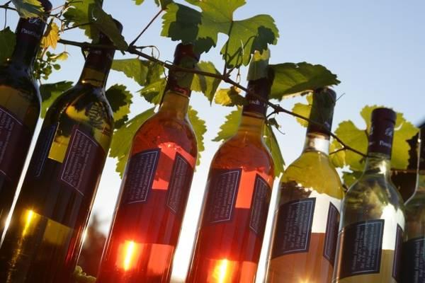 bottiglie di vino stiriano da acquistare nelle enoteche della città