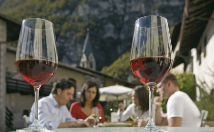 Vini del Trentino-Alto Adige: bianchi e rossi DOC