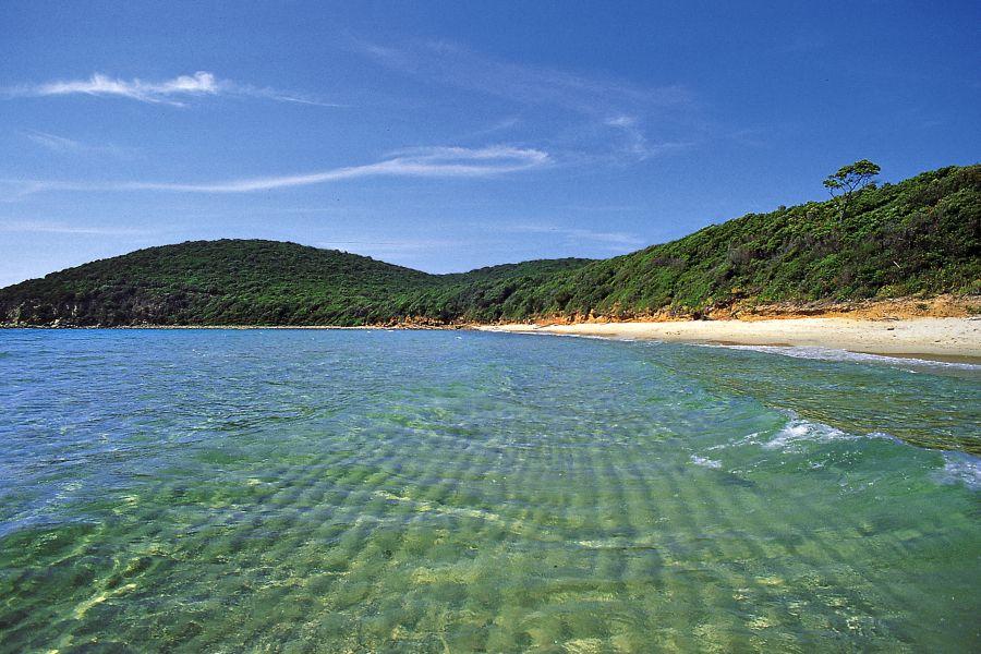 Spiaggia Scarlino