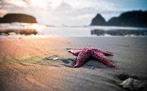 Galateo in spiaggia: le regole da rispettare al mare