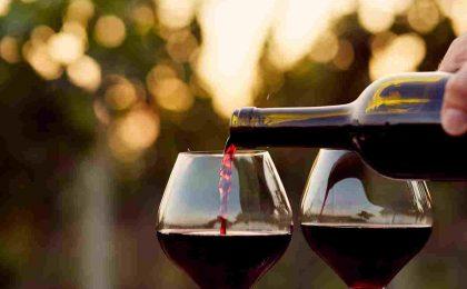 I migliori vini rossi italiani: le bottiglie da provare