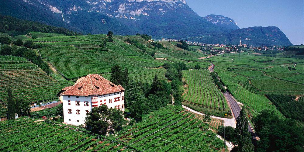 l'elenco delle strade del vino