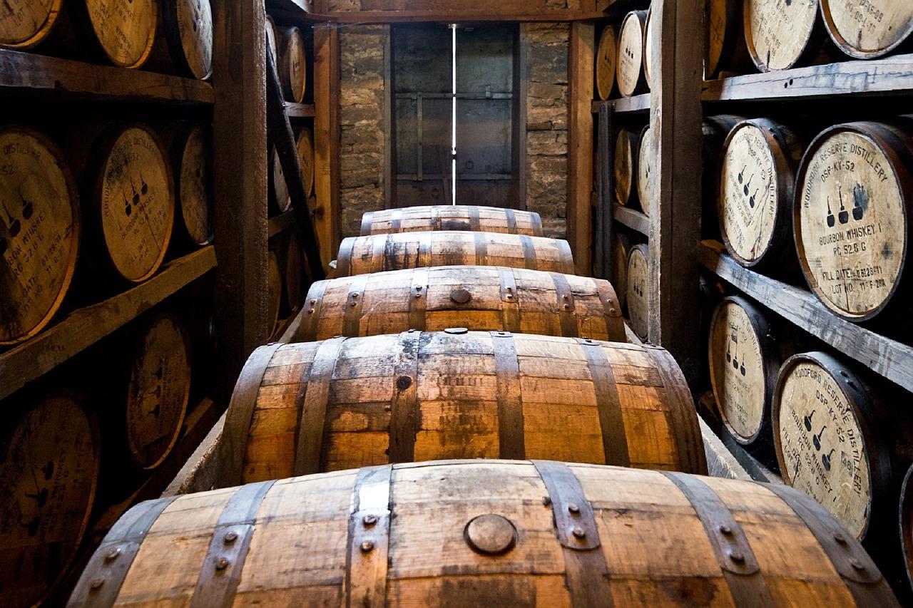 Come degustare il whisky dai bicchieri agli abbinamenti con il cibo 5