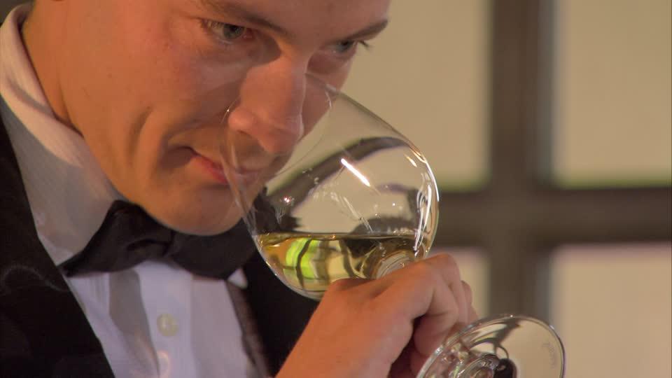 come si gusta un vino