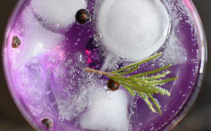 London Dry Gin, 28 bottiglie da acquistare e gustare