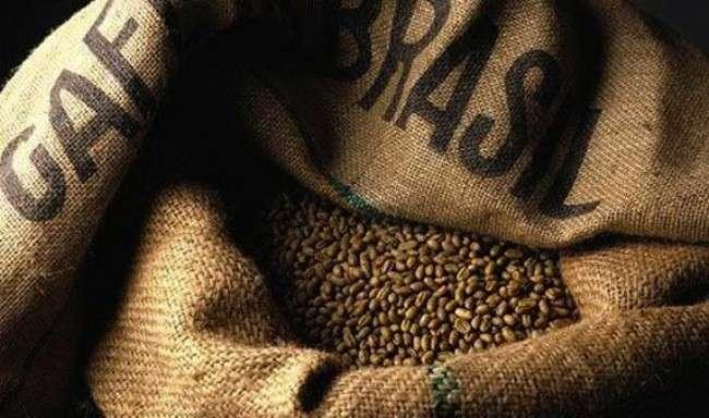 brasiliano invece il caffe della fazenda santa ines