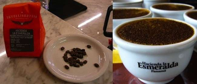 il caffe hacienda la esmeralda da panama