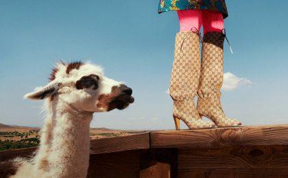 Scarpe Gucci 2018-2019: dagli stivali a mocassini e sneakers, i must have per l'inverno [FOTO]