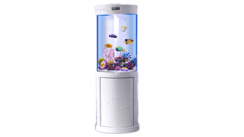 acquario cilindrico