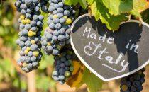 Vini italiani all'estero: quali sono i più famosi?